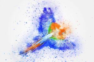 beautiful birds painting