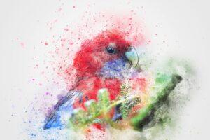 best birds painting