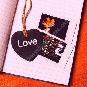 Romantic bangla love sms