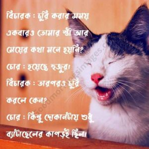 bangla funny sms 2020