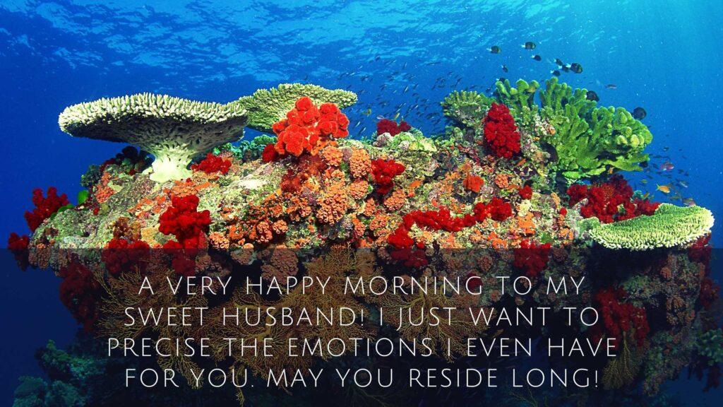 Lovely Good Morning Messages for Husband