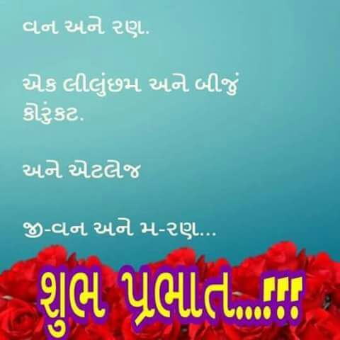 Good Morning Quotes in Gujarati font