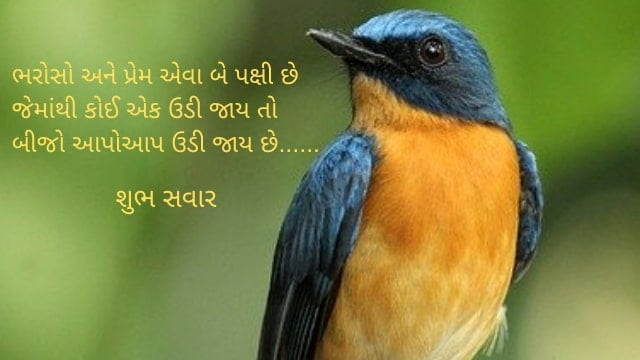 Good Morning Quotes in Gujarati words