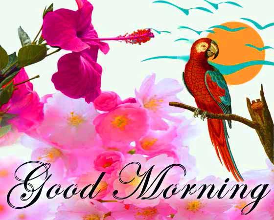 bengali good morning shayari