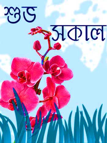 bengali good morning sms for lover
